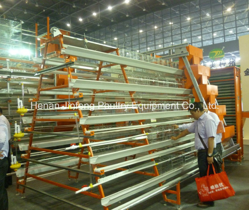 Farm Poultry Machinery Chicken Frame Layer Cage