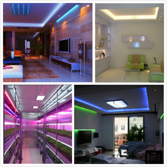 24V Waterproof SMD2835 Flexible LED Strip Light
