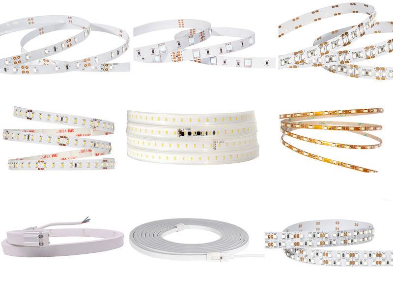 Flexible 10mm Round Rope Light LED, Decorative LED Rope Light100m with TUV Ce RoHS