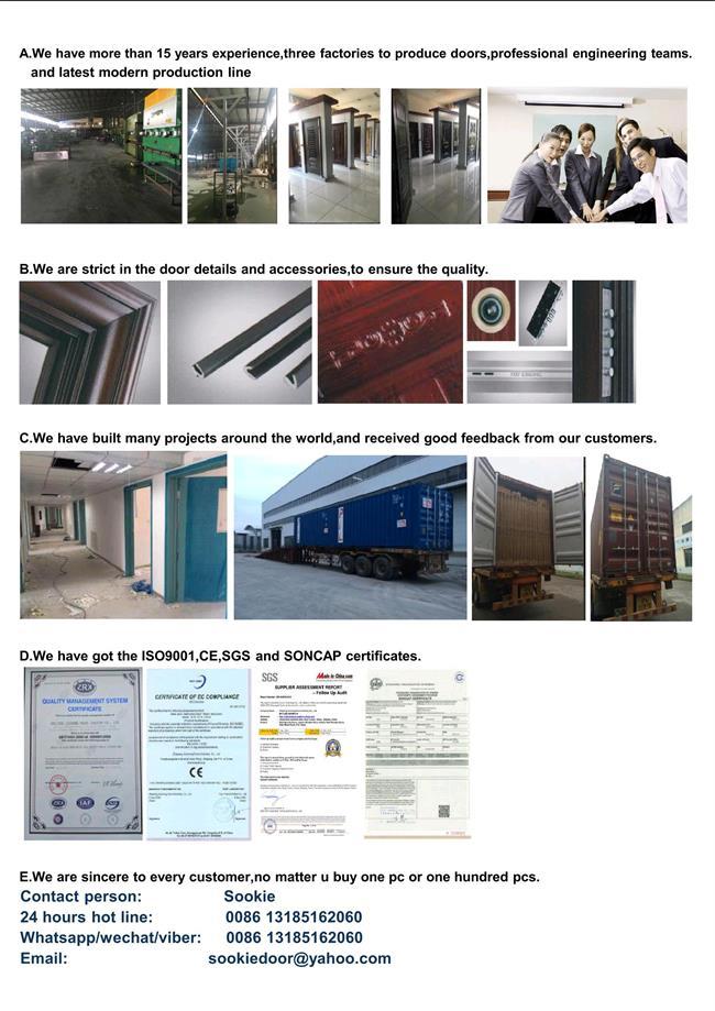 Europe High Quality Steel Door (RA-S005)