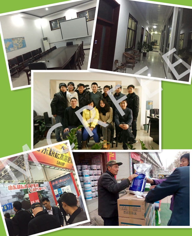 Factory Directly Sale Price Fertilizer NPK 30-10-10