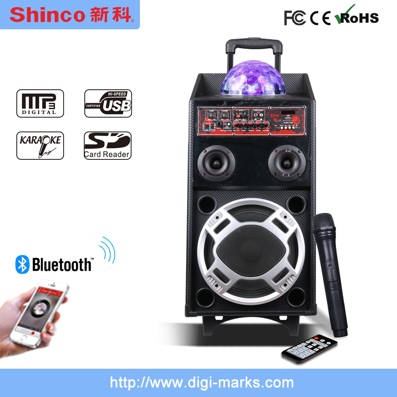 Hot Sale Karaoke Portable with Bluetooth and FM Speaker