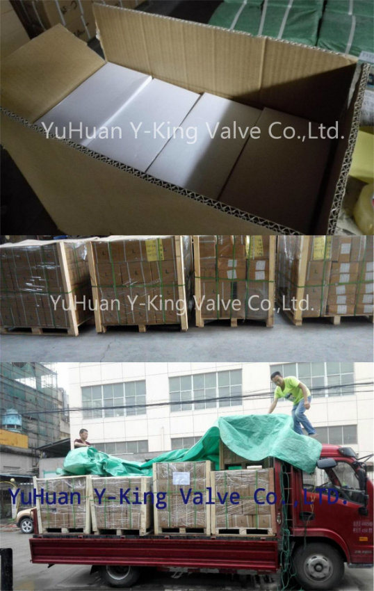 3/8'' Brass Ball Gas Valve with Nozzle (YD-1035)