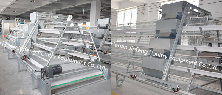 High Sales U-Shaped Steel Chicken Cage for Layers/Broiler/Pullet