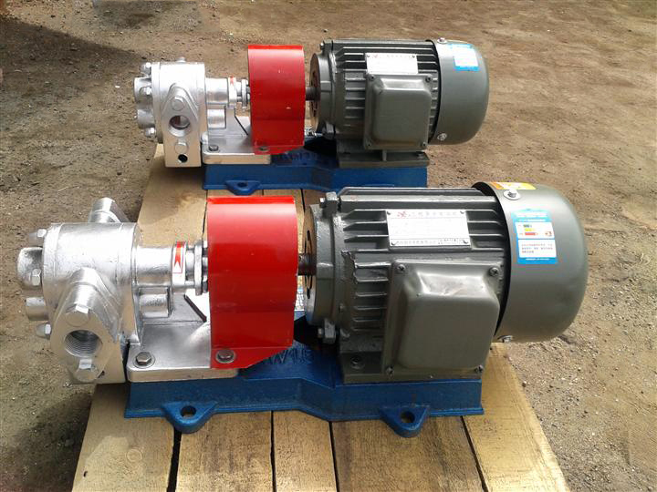 LQB stainless steel material paraffin pump