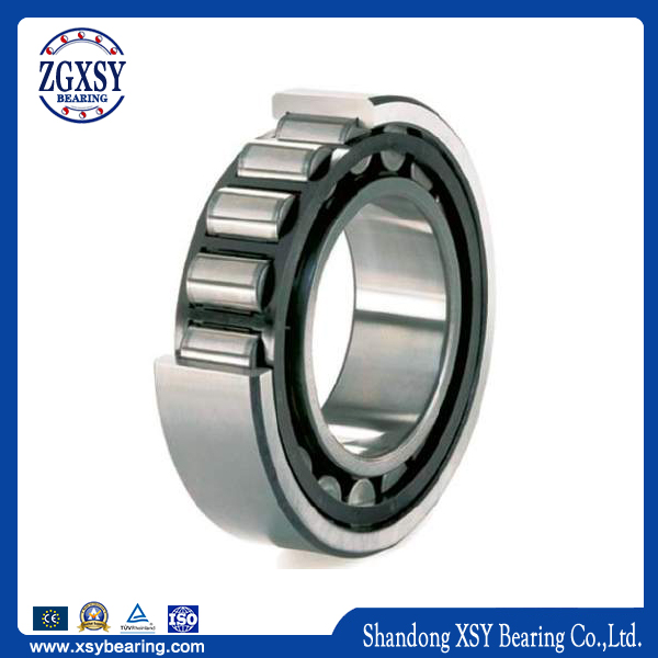 High Quality Hot Sales Cylindrical Roller Bearing N209