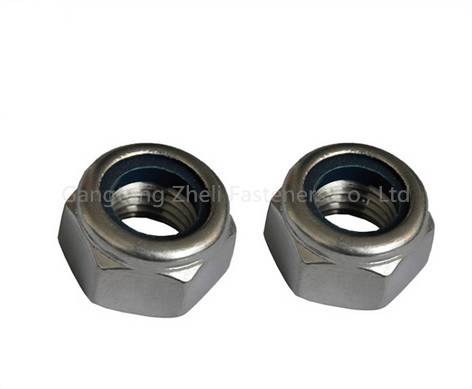 Stainless Steel Nylon Lock Nuts DIN985/DIN982 for Industry