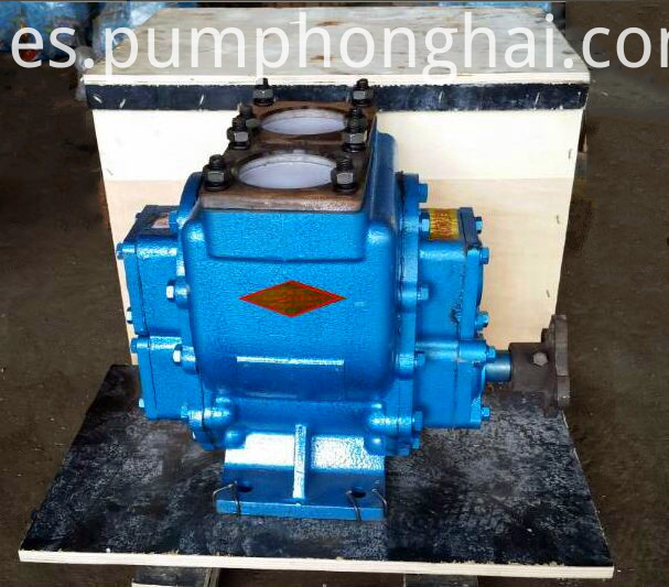 Circular Arc Gear Pump Ss