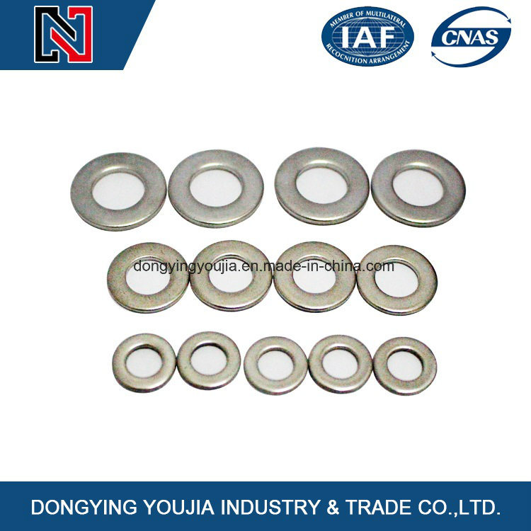 DIN125 Stainless Steel Flat Washer with Standard of DIN, ISO, JIS, ANSI, GB