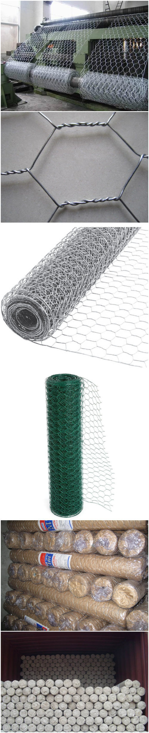 China Anping Green PVC Coated Hexagonal Wire Mesh Roll