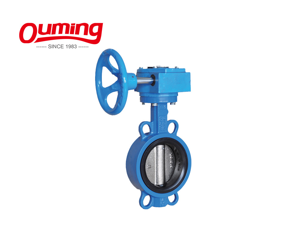 High Quality Epoxy Coating Cast Iron Luge Type Butterfly Valves