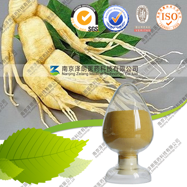 Free Sample Dadix Ginseng Extract Panax Ginseng Root Extract