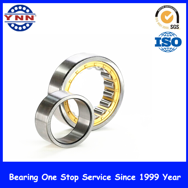 Bearings for Sliding Doors Cylindrical Roller Bearing