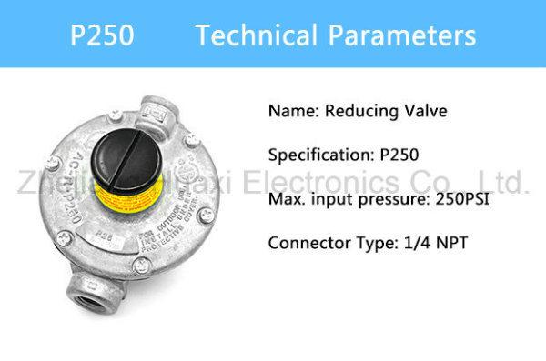 P250 Gas Pressure Regulator Gas Meter for Natural Gas