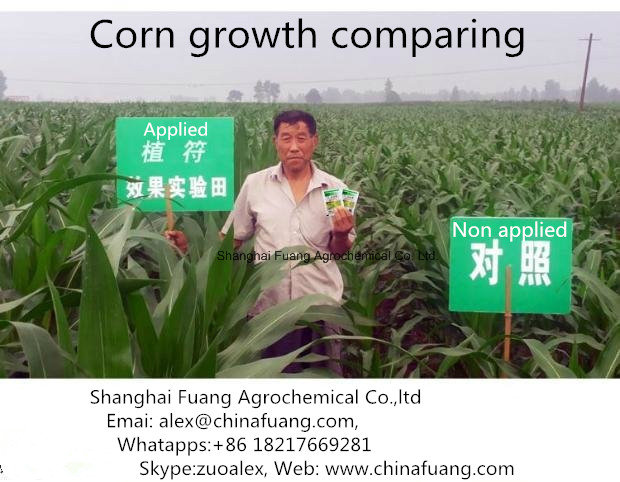 Cotton Plant Hormones 95% Tc Tdz / Thidiazuron