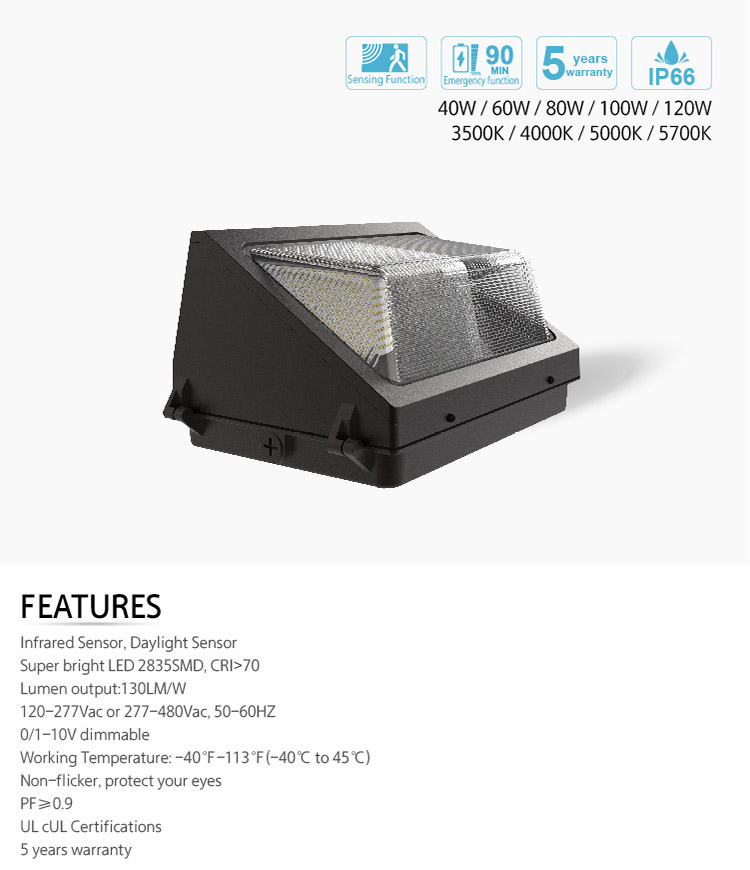 LED Wall Pack Light 140lm/w