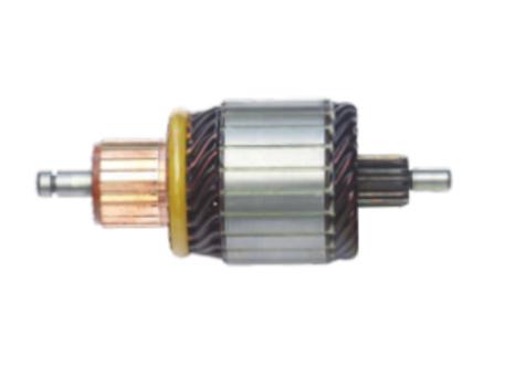 1004011072, 1004011088 High Quality Starter Motor Armature 12V for Bosch