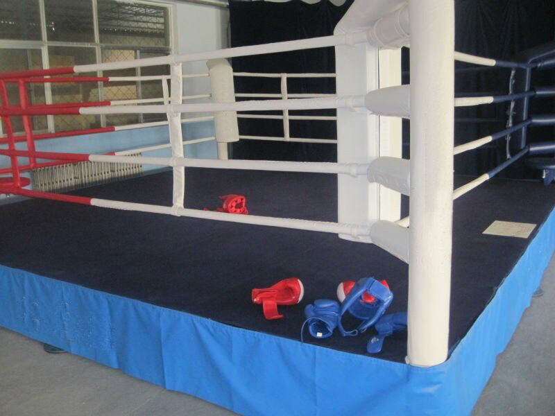 Professional Boxing Flatform Competition Boxing Ring MMA Cage