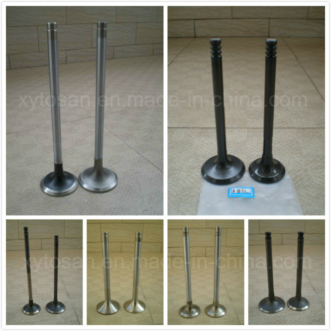 Intake and Exhaust Valve for FIAT/Ford/GM/Hino/Honda/Isuzu/Opel, Peugeot