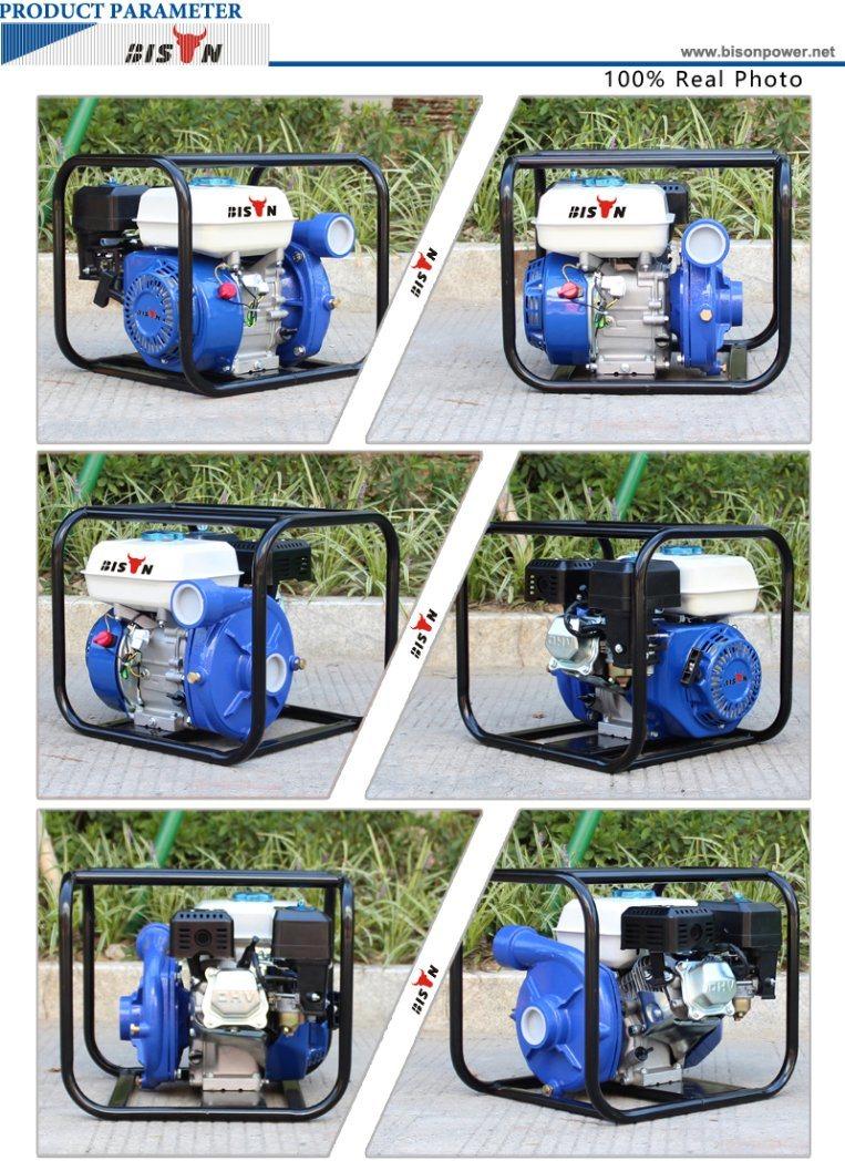 Bison (China) Bswp20I 2inch High Pressure High Pump Lift Water Pump, Types of Gasoline Engine Pump
