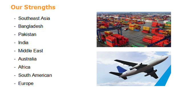 Sea Logistics From Shenzhen/Shanghai/Guangzhou/Xiamen/Ningbo to Pakistan