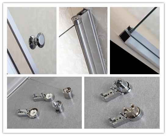 Nice Design 6mm Tempered Glass Shower Door (LT-9-3180-C)
