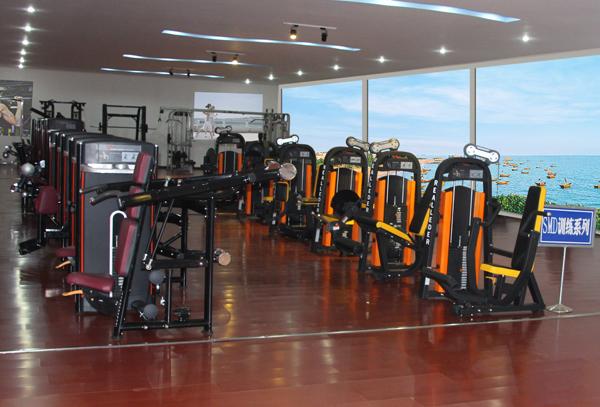 Fitness Equipment/Bodybuilding Equipment for Pectoral Machine (M7-1007)