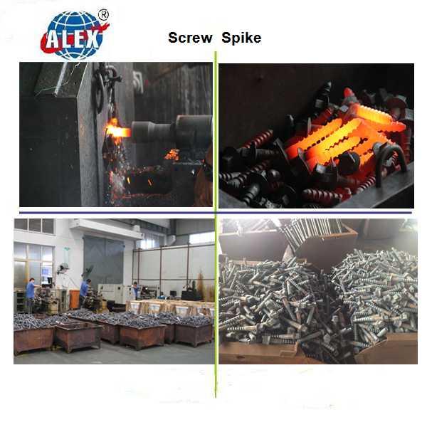 Ss35 Screw Spike, Ss5 Sleeper Screw, Ss8 Concrete Screw