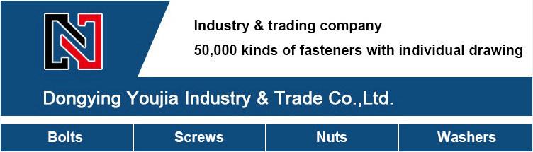 Custom-Made Weld Fasteners Nut