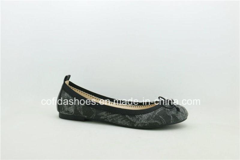 2017 New Style Fashion Flat Dress Lady Shoe