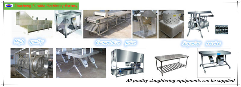 Taking out The Organs Line Machines for Poultry Slaughtering
