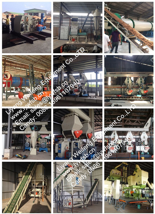 CE Hot Sale Wood Pellet Machine Factory Price
