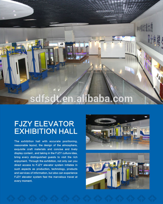 Fjzy Machine Room-Less Passenger Elevator with High Quality