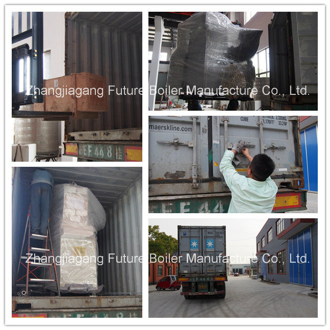 China's Fuel Oil Steam Boiler for Brewery