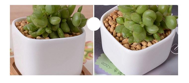 Creative Desktop Decoration Mini White Ceramic Flower Pot