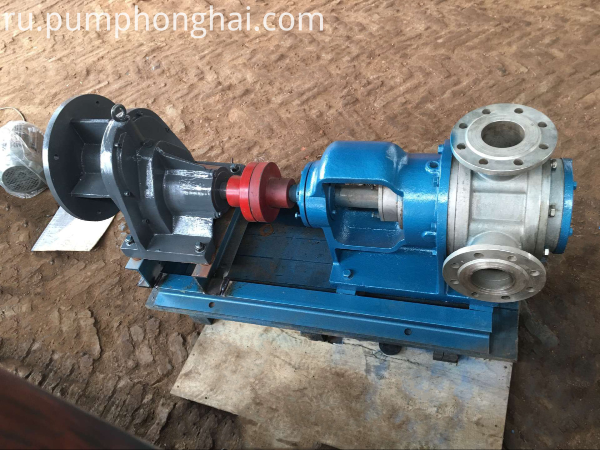 Stainless Steel 304 Cast Iron Pump with In-line Ports