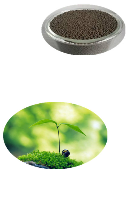 natural plant growth regulator for agriculture