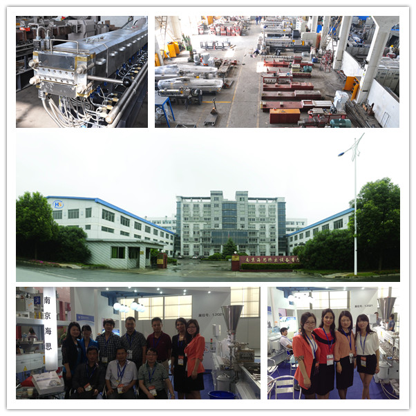 Nanjing Haisi Compounding Twin Plastic Extrusion Machine
