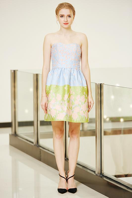Zip Back Bandeau Mini Dress