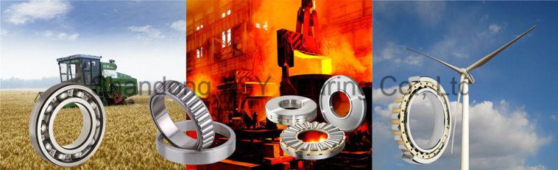 Bearing N309 Cylindrical Roller Bearing