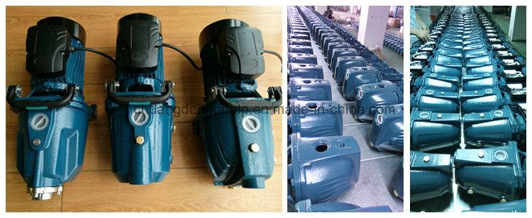 Mini Electric Fuel Pressusre Pump for Residential Purposes