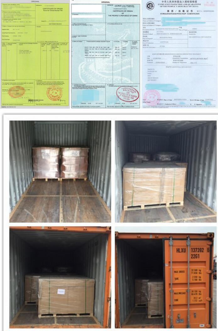 Logistics Services Freight Agents Shipping From China to Canada
