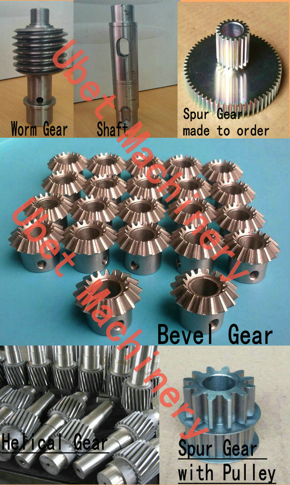 Stainless Steel Worm Drive Gear and Brass Transmission Spur Gear