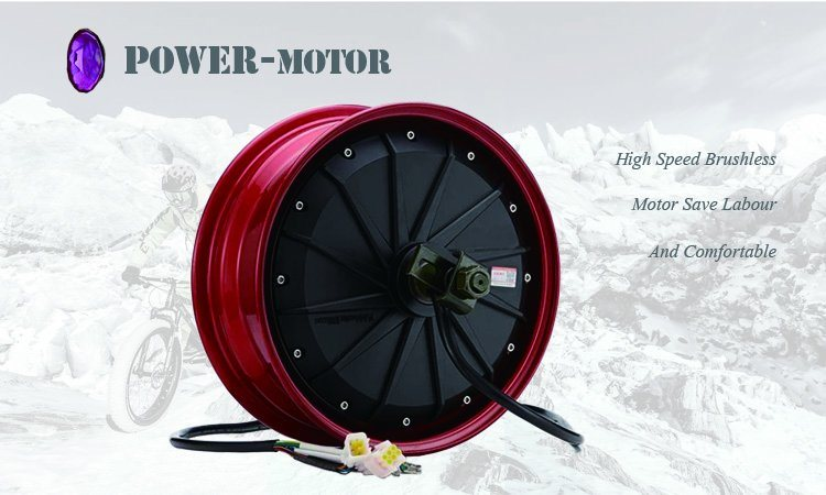36V250W Fat Tyre 20 Inch Ebike with Ce