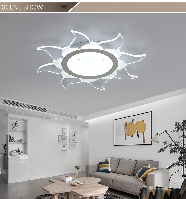 Factory Price Simple Style 22W LED Ceiling Lights for Homes