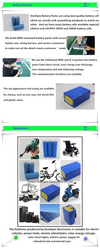 LiFePO4 Battery Pack 24V 100ah