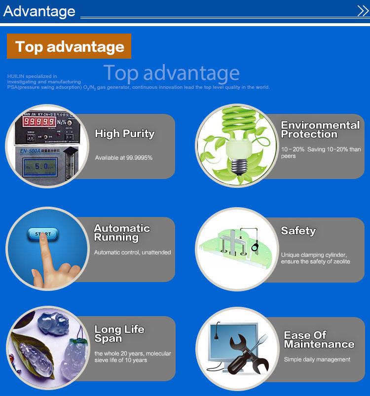 High Purity Psa Nitrogen Generator for Sale (99.999%)