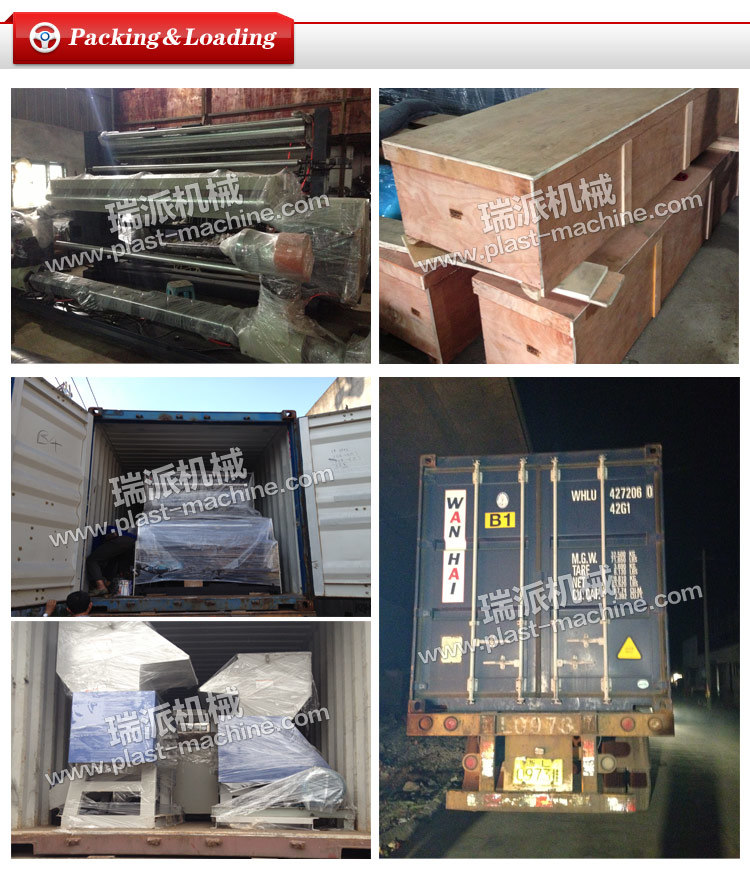Ruipai Brand Jpcm Vertical Color Material Mixer with Low Price