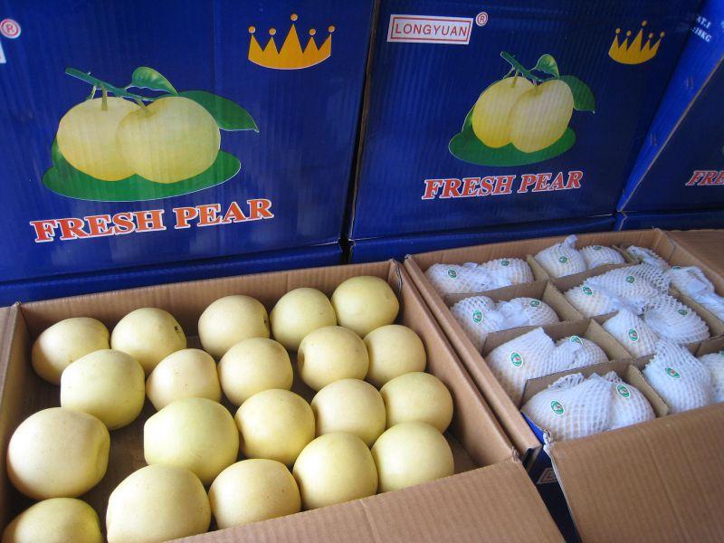 Fresh Golden Pear/Crown Pear