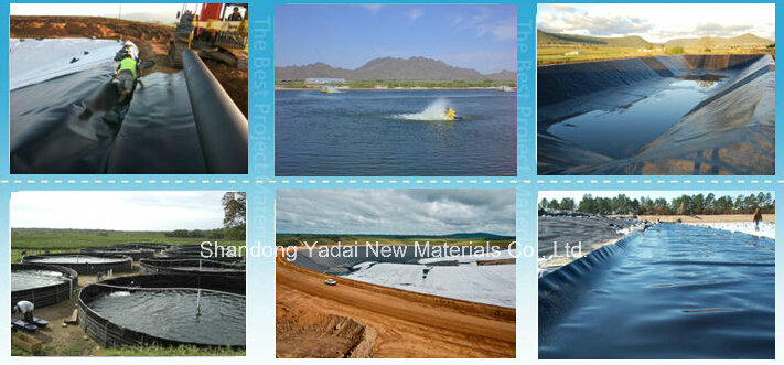 HDPE Geomembrane for Pond or Landfill Projects